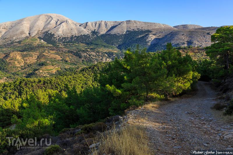 Экскурсия по острову Родос / Фото из Греции