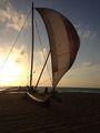 Лодка на берегу / Шри-Ланка