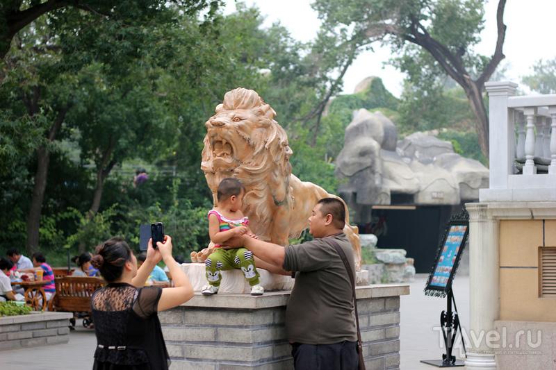 Beijing / Китай