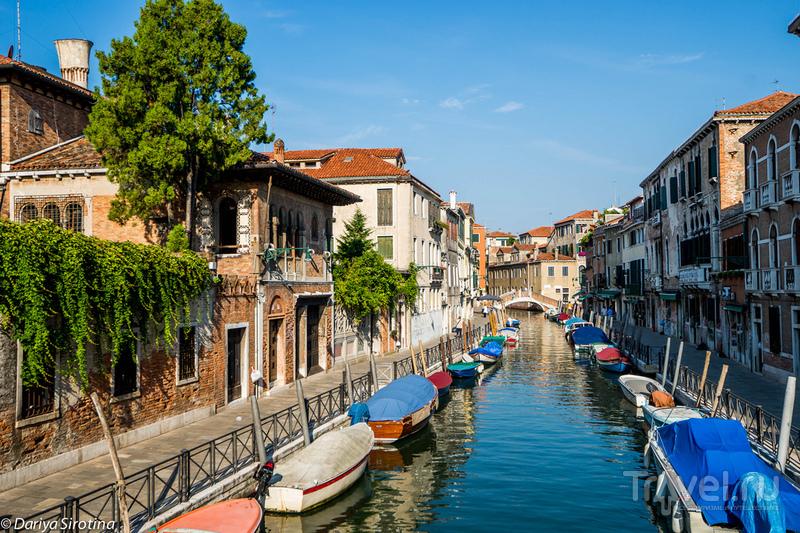 Венеция россыпью / Фото из Италии