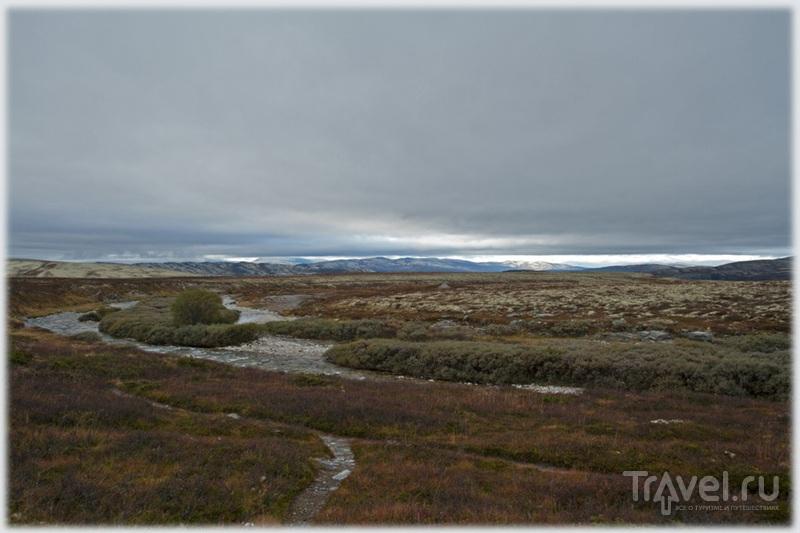 В Норвегии / Фото из Норвегии