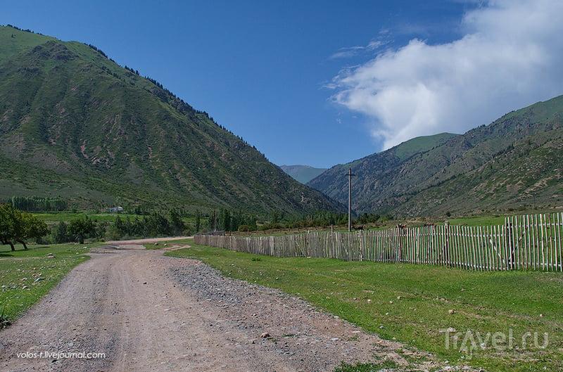 В горах Кунгей-Алатау, Киргизия / Фото из Казахстана