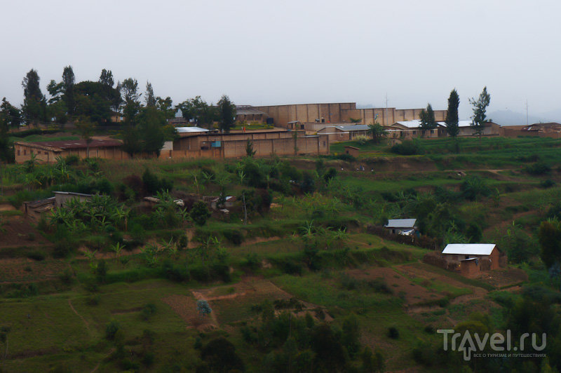 Оранжевое настроение / Руанда