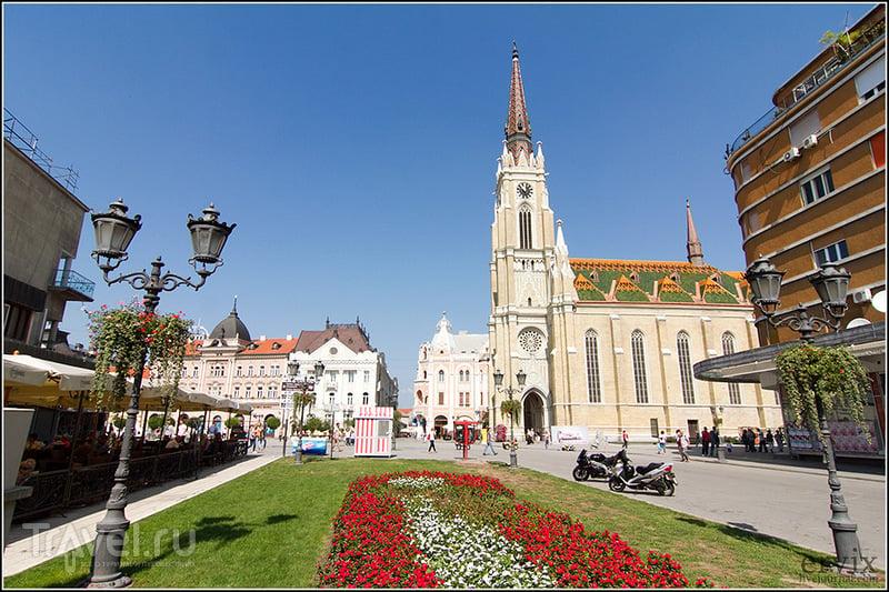 В городе Нови-Сад, Сербия / Фото из Сербии