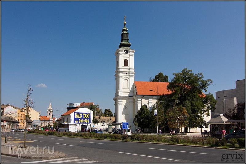 Успенская церковь на Успенской площади в городе Нови-Сад, Сербия / Фото из Сербии