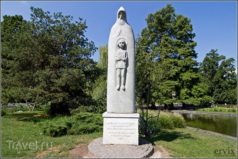 Памятник Сергию Радонежскому в городе Нови-Сад, Сербия / Фото из Сербии
