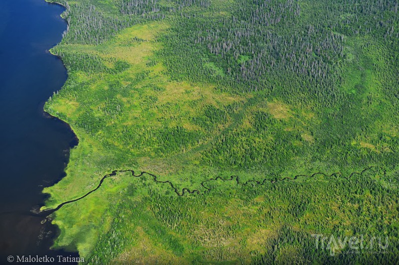 Аляска. Полет в Катмаи и наблюдение за дикими медведями / Фото из США