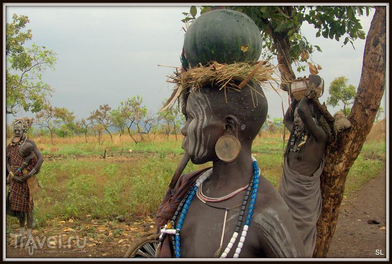 Племя Мурси (Mursi) / Эфиопия