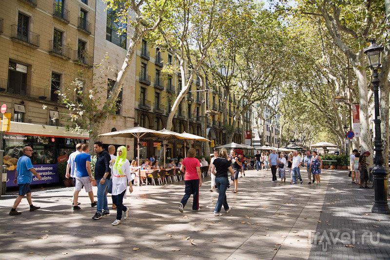 Испанские каникулы: прогулка по Барселоне / Фото из Испании