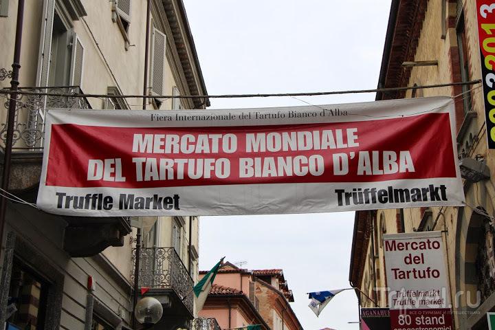 Ярмарка белого трюфеля / Италия