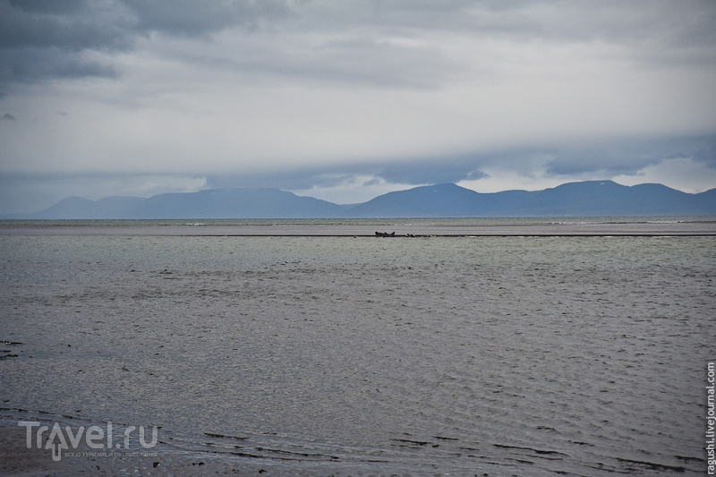 Исландия. Животный и прочий мир