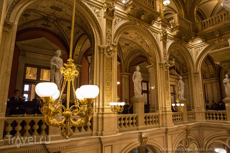 Венская опера. А как там внутри?