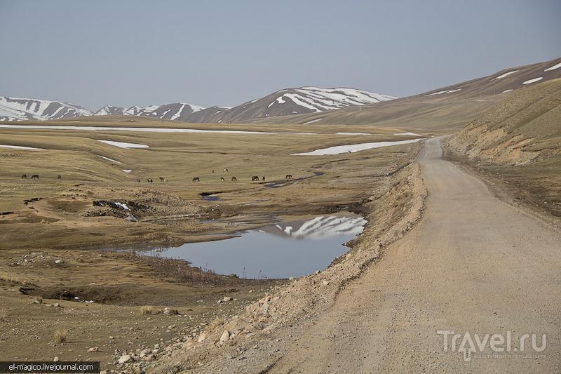 Древние кладбища, люди и знакомство с летучими мышами / Фото из Киргизии