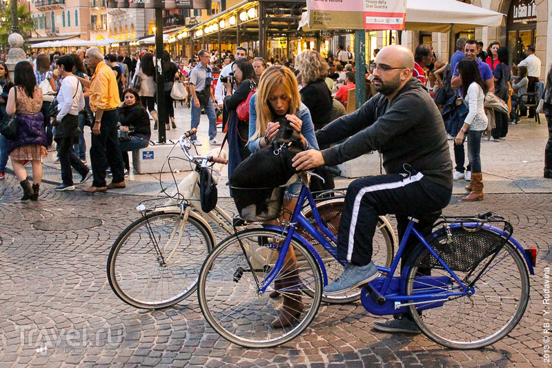 Верона: город пылающих сердец / Фото из Италии