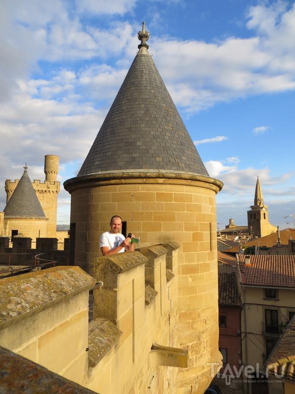 Замок в Olite. / Испания