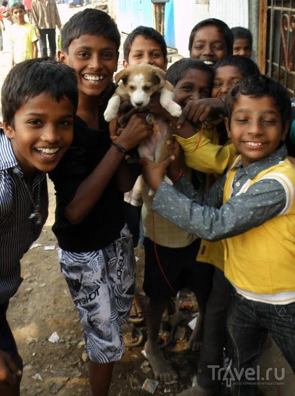 Трущобы Бомбея / Индия