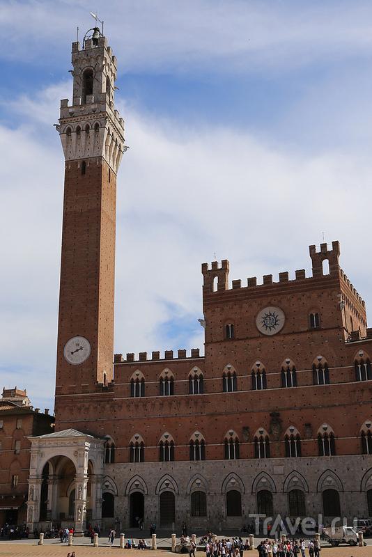 Башня Торре дель Манджа в Сиене, Италия / Фото из Италии