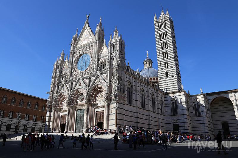 Сиенский кафедральный собор, Италия / Фото из Италии