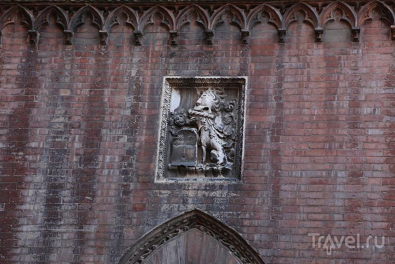 Очаровательная Сиена / Фото из Италии