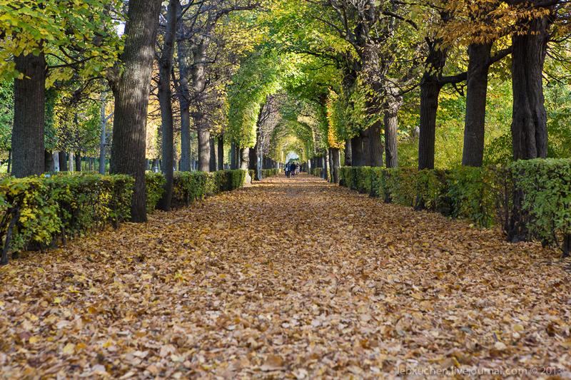 В парке Шёнбрунн, Австрия / Фото из Австрии