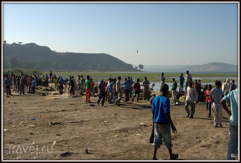 Рыбный рынок в Авасе, Эфиопия / Фото из Эфиопии