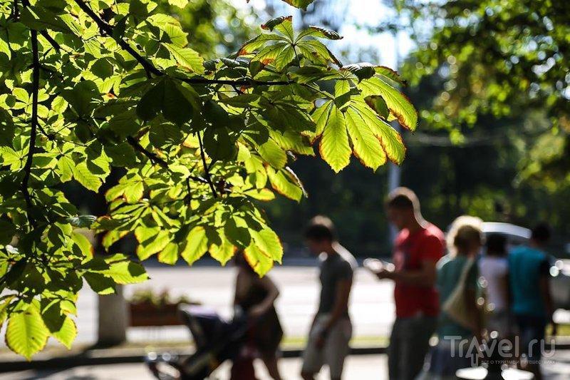 Прогулка по Кишинёву / Фото из Молдавии