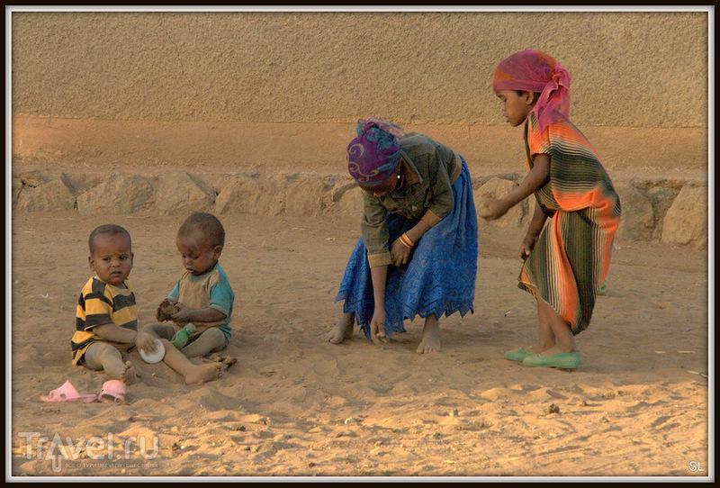 Заповедник Бабиле (Babile) / Фото из Эфиопии
