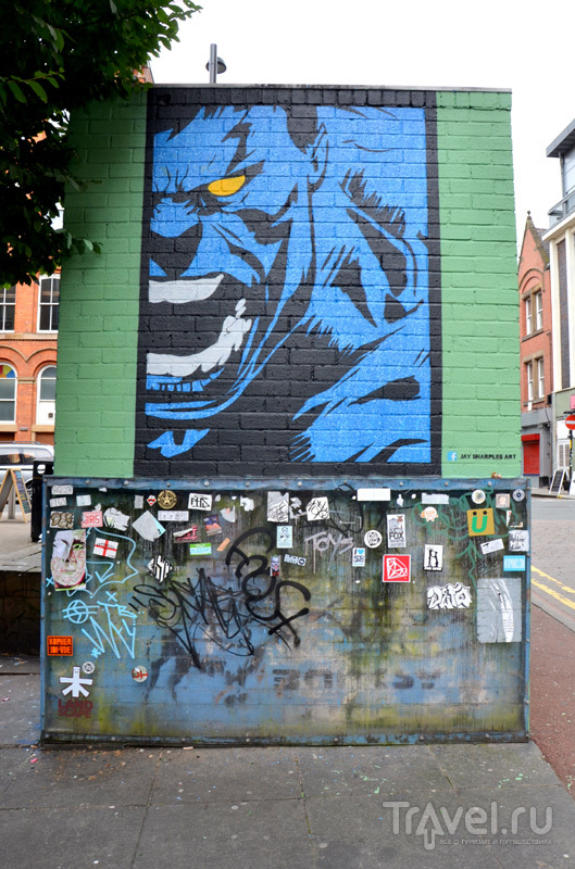 Внизу - защищенное пластиком граффити Бэнкси в Манчестере, Великобритания / Фото из Великобритании