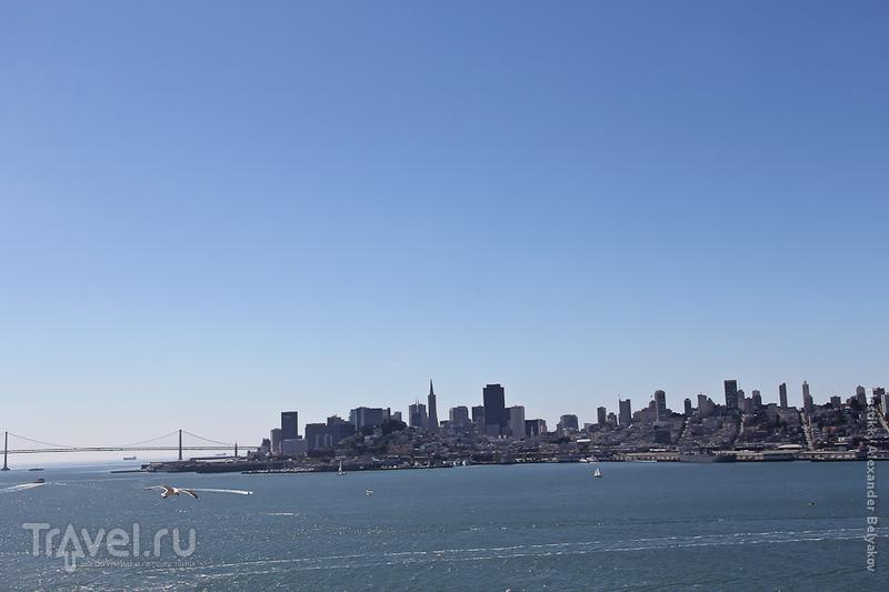 Залив Сан-Франциско, США / Фото из США