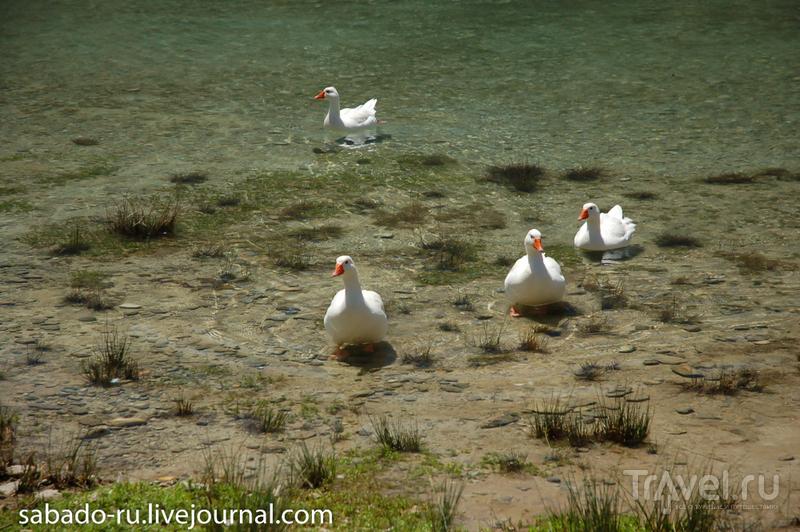 Лаппа и озеро Курнас / Греция