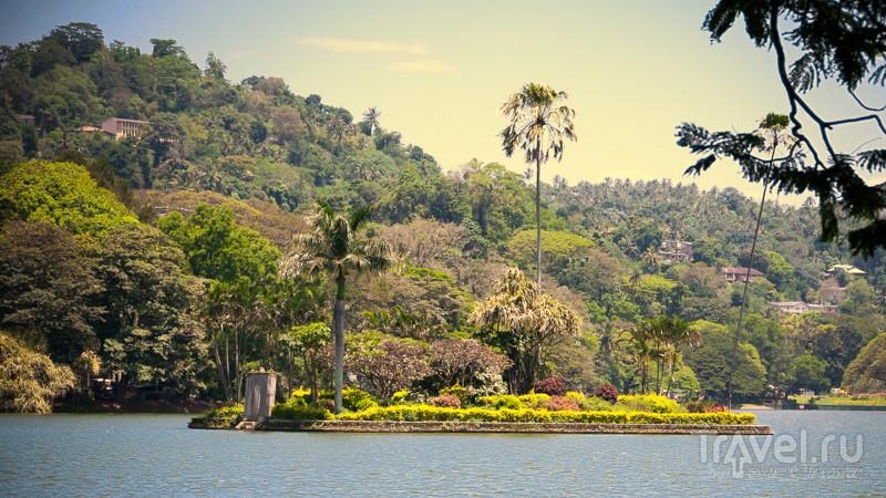 В городе Канди, Шри-Ланка / Фото со Шри-Ланки