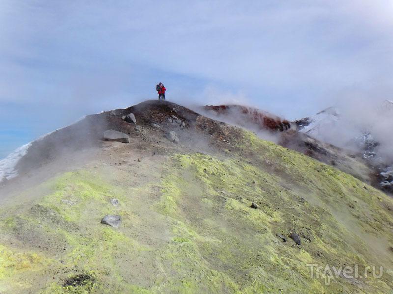 Восхождение на вулкан Авача / Фото из России