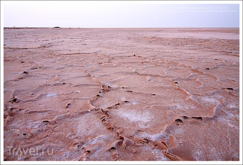 Солончак Шотт-эль-Джерид, Тунис / Фото из Туниса