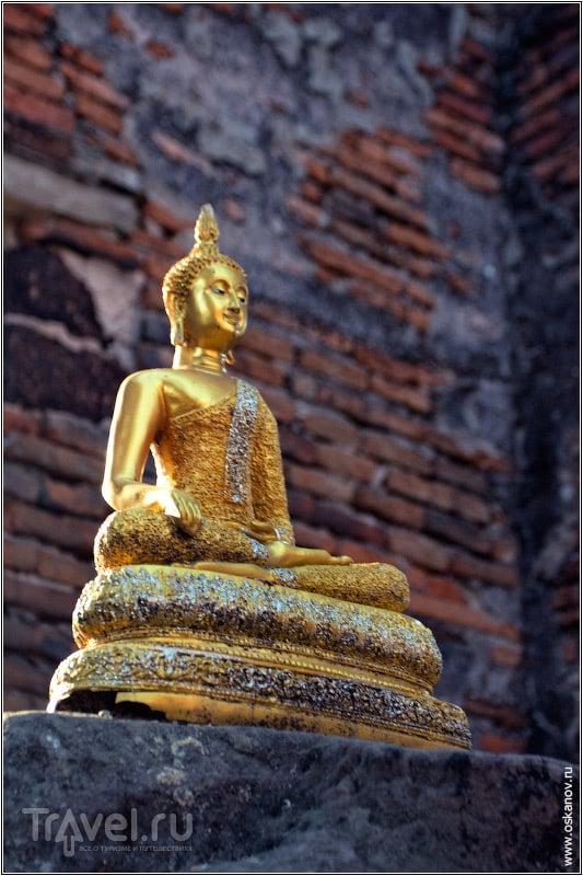 Мой спаситель!  / Фото из Таиланда