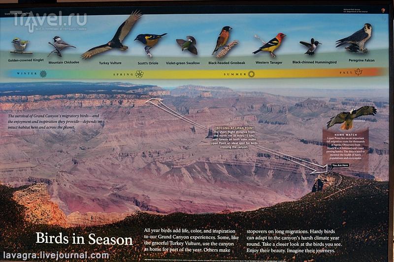 Гранд Каньон - главный карьер планеты Земля / США