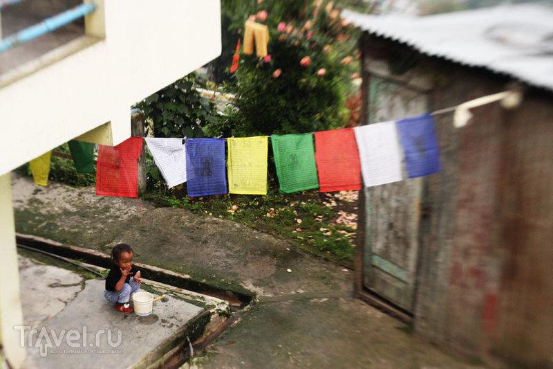 Darjeeling. Top 5 / Индия