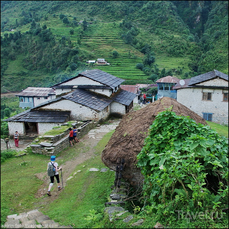 Непал, базовый лагерь Аннапурны и Пунхилл / Непал