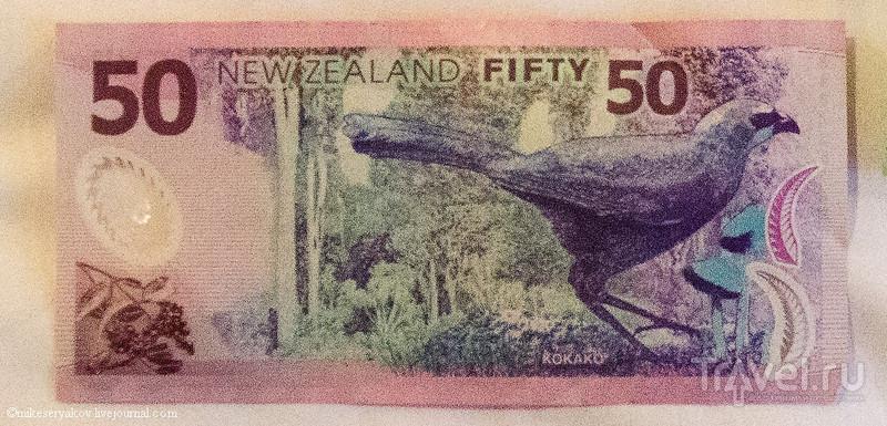 Новая Зеландия. Деньги