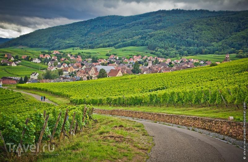 На просторах Эльзаса, Франция / Фото из Франции