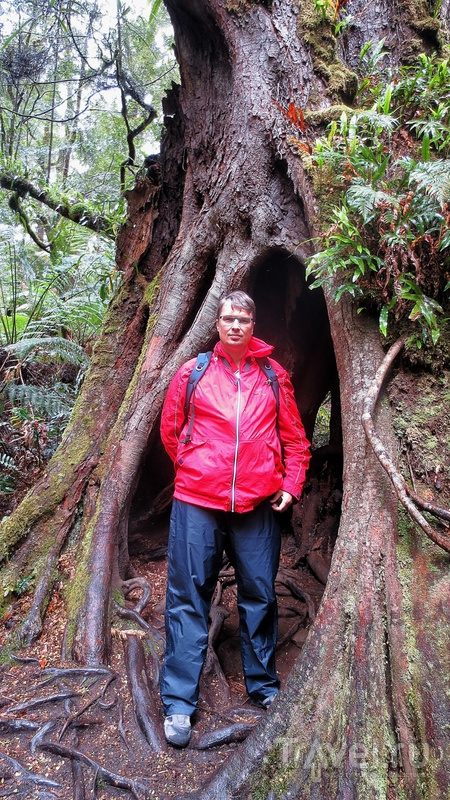 Большое путешествие. Австралия. Тасмания / Австралия