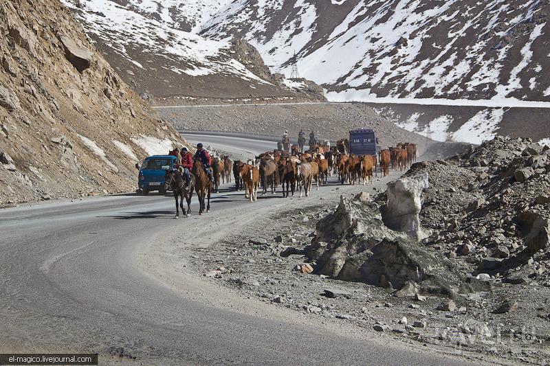 Перевал Тоо-Ашуу / Фото из Киргизии