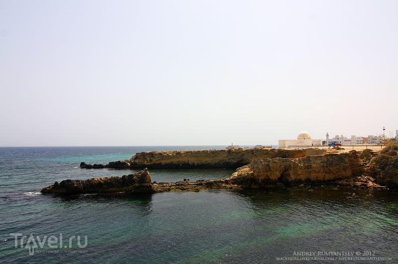 вилайет монастир тунис