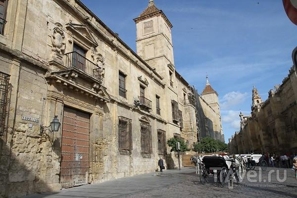 Кордова. Мескита / Испания