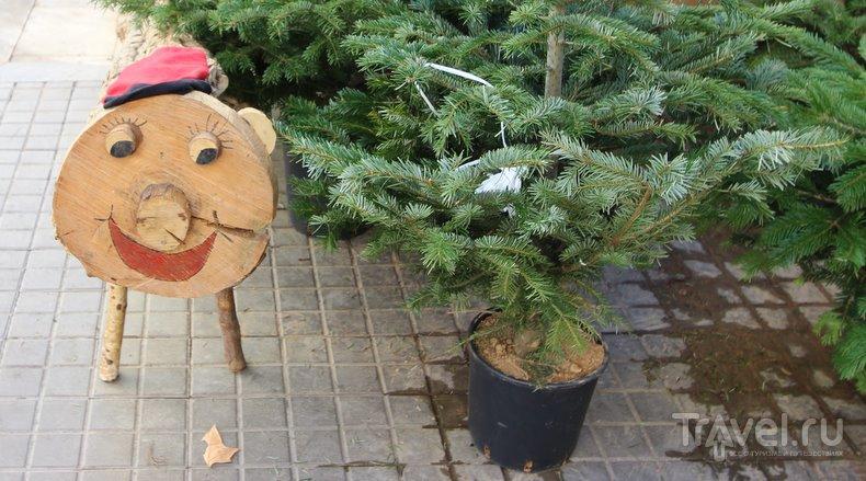 Дед Мороз. Каталонская версия