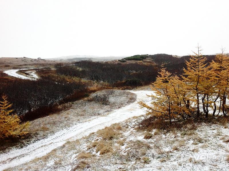 Осенние краски Камчатки. Кордон Копыто / Россия