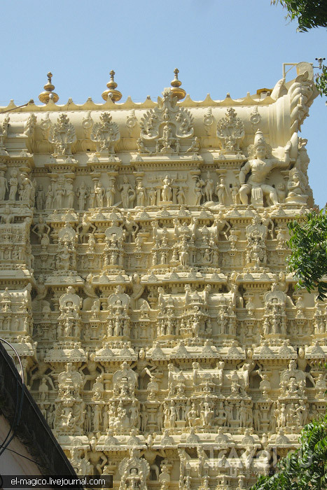 Первые мгновения в Керале. Тривандрум / Фото из Индии