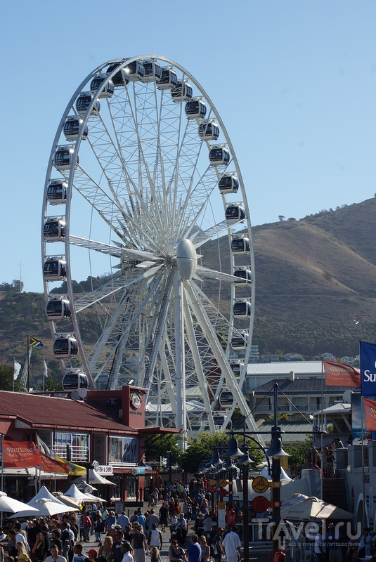 А в декабре в Кейптауне лето / ЮАР