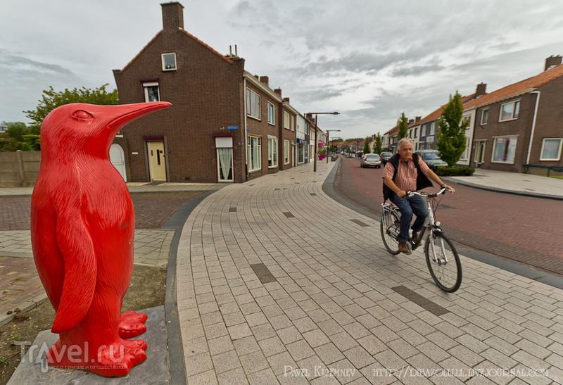 В городе Брескенс, Нидерланды / Фото из Нидерландов
