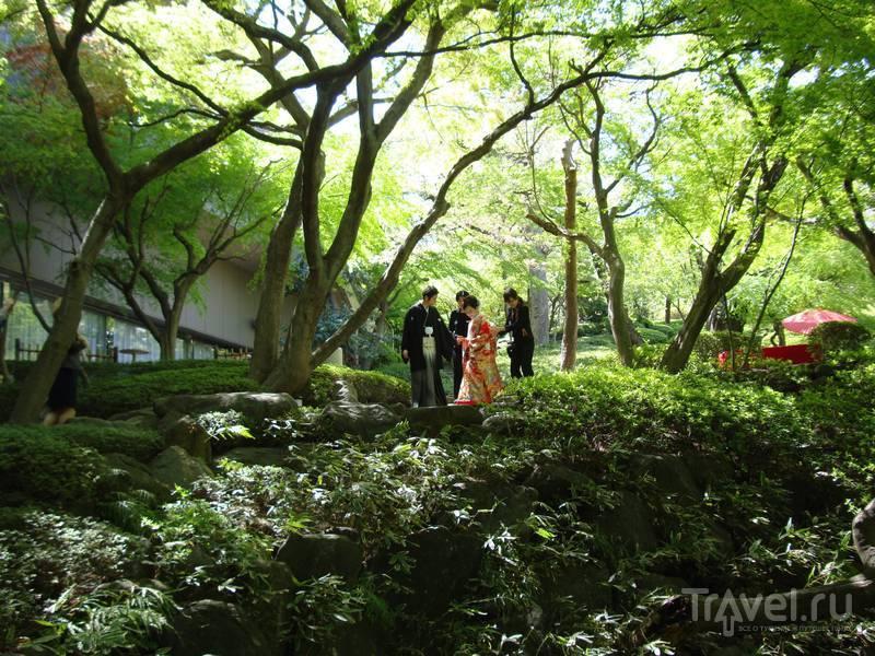 Япония - путешествие на 8 дней / Япония