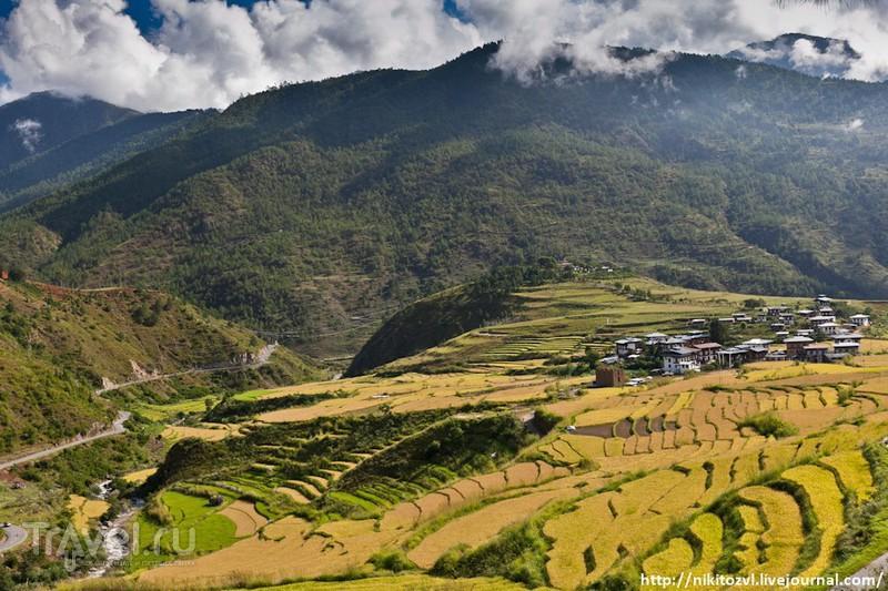 Бутан. Монастырь Святого Сумасшедшего / Бутан